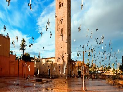 day trip From Casablanca to Marrakech